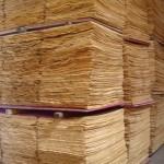 Lâminas utilizadas na fabricação dos compensados - Qualiplás